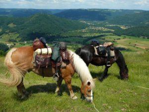 chevaux chargés